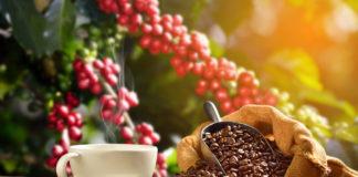 Aromatyczna kawa w filiżance