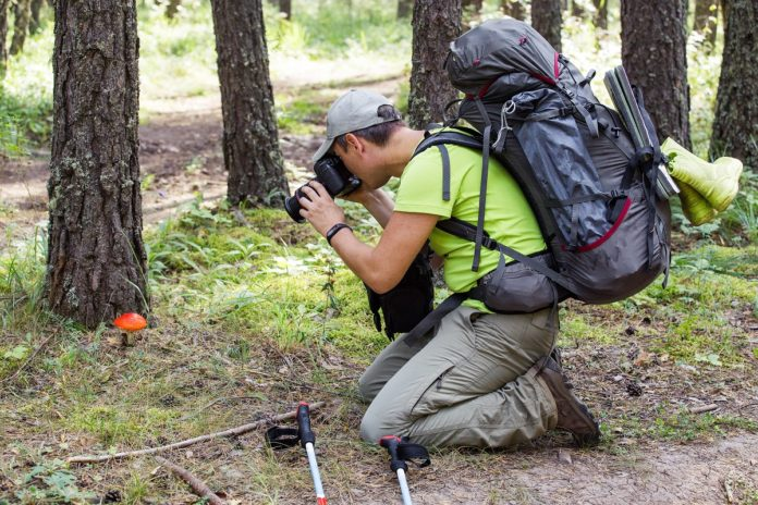 Mężczyzna w lesie robi zdjęcia przyrody