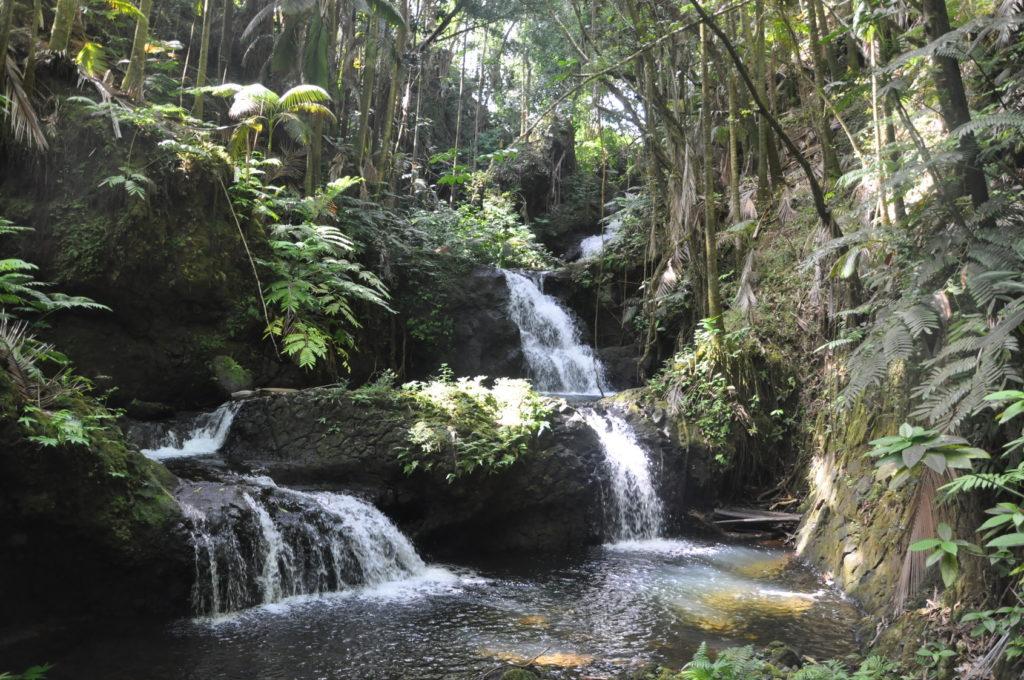 hawajskie wodospady