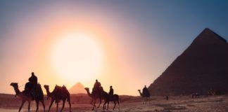 Egipt piramidy wielbłądy