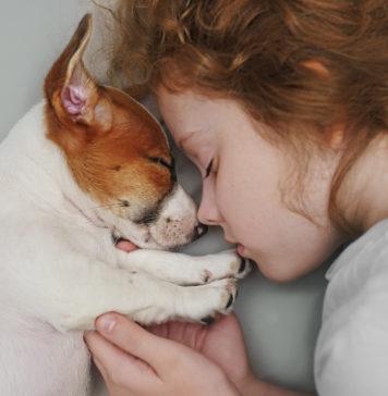 dziewczynka śpiąca ze szczeniakiem