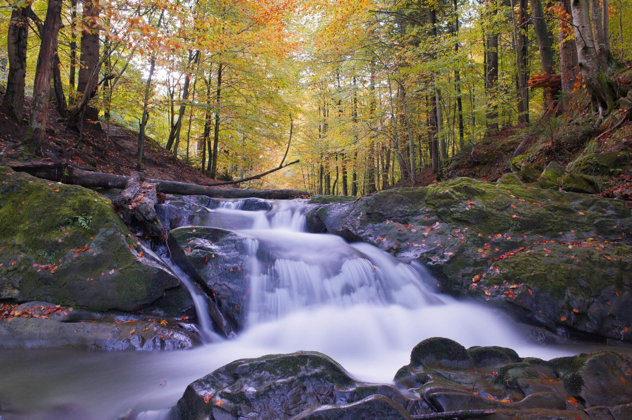 Bieszczady złota jesień potok Hylaty