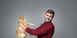 młody mężczyzna uczulony na sierść trzymanego kota
