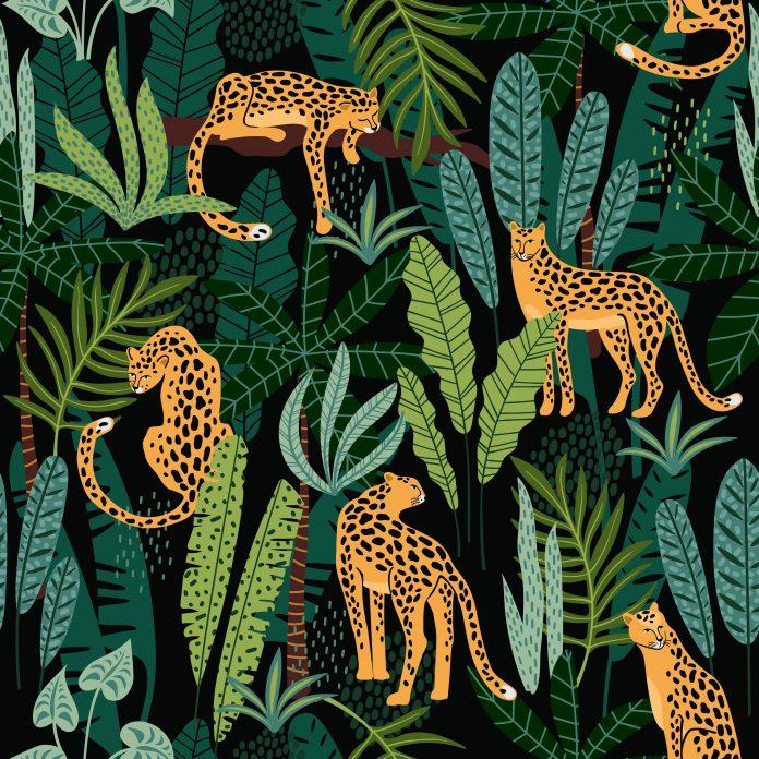 tapeta dżungla gepardy
