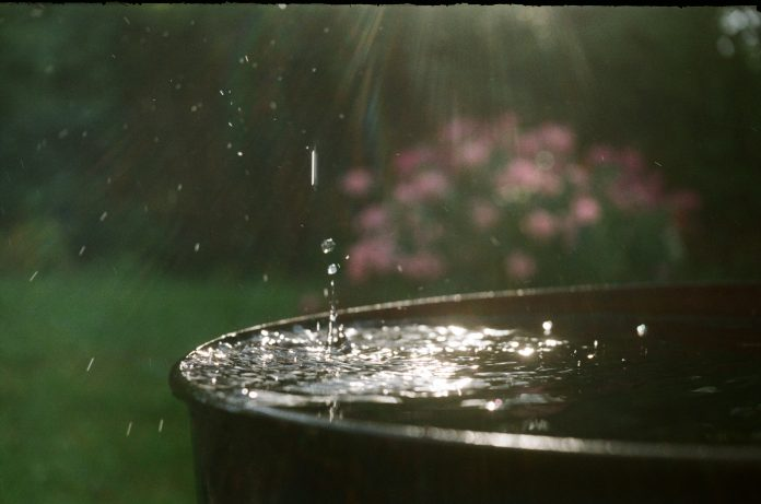 zbieracz wody deszczowej