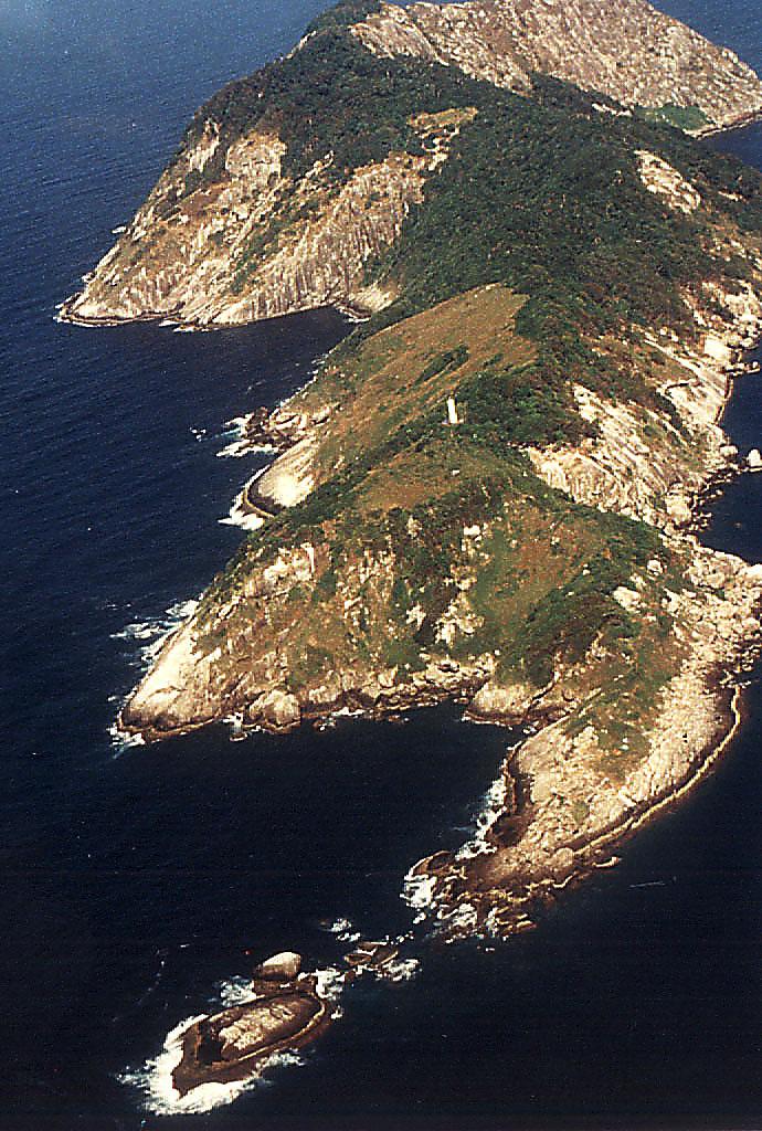 Ilha da Queimada Grande węże